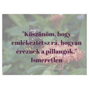 szerelmes idézet 9.